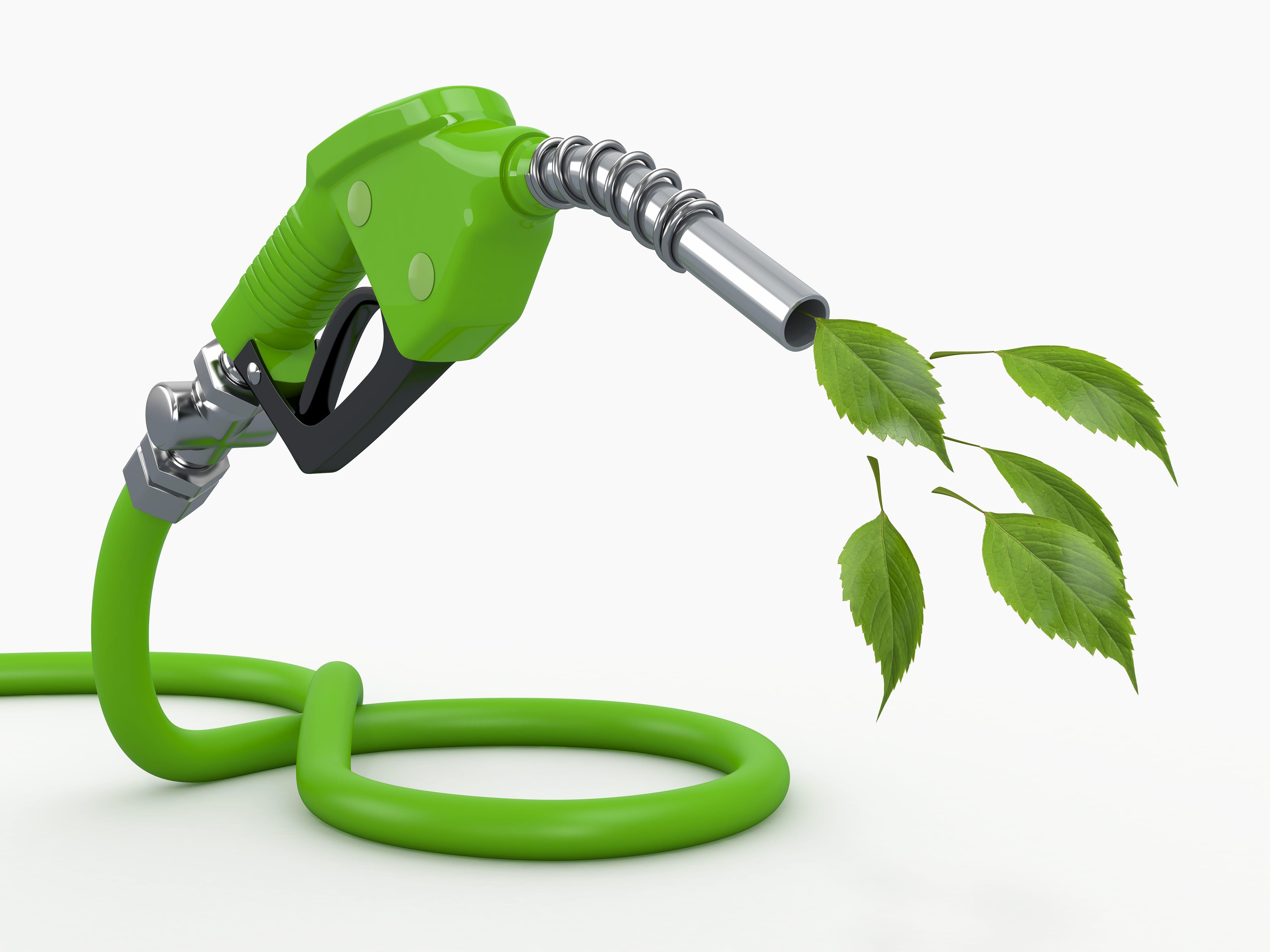 bio brandstof